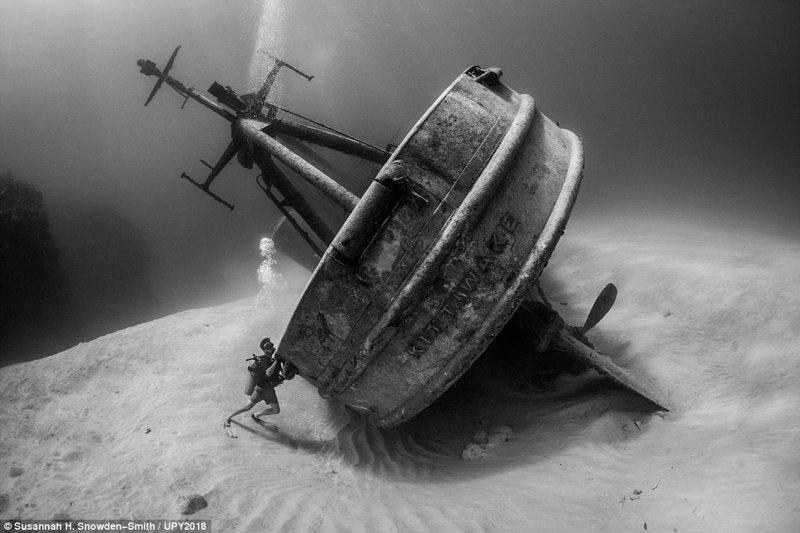 Спасательное судно USS Kittiwake, затопленное у Каймановых островов, Сюзанна Сноуден-Смит конкурс, красиво, лучшее, подборка, подводные снимки, подводные фото, фото, фотографы