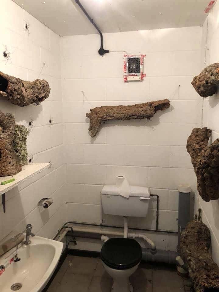 1. Туалет из кошмарных снов в интернете, впечатляет, необъяснимое, неожиданно, подборка, редкие фото, странные фото, фото