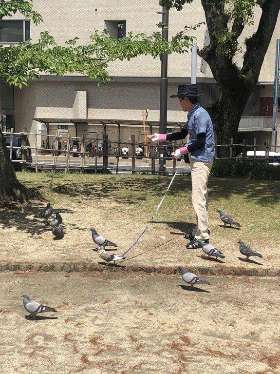 10. Этот парень просто выгуливает своего питомца-голубя, или повелевает армией зла? в интернете, впечатляет, необъяснимое, неожиданно, подборка, редкие фото, странные фото, фото