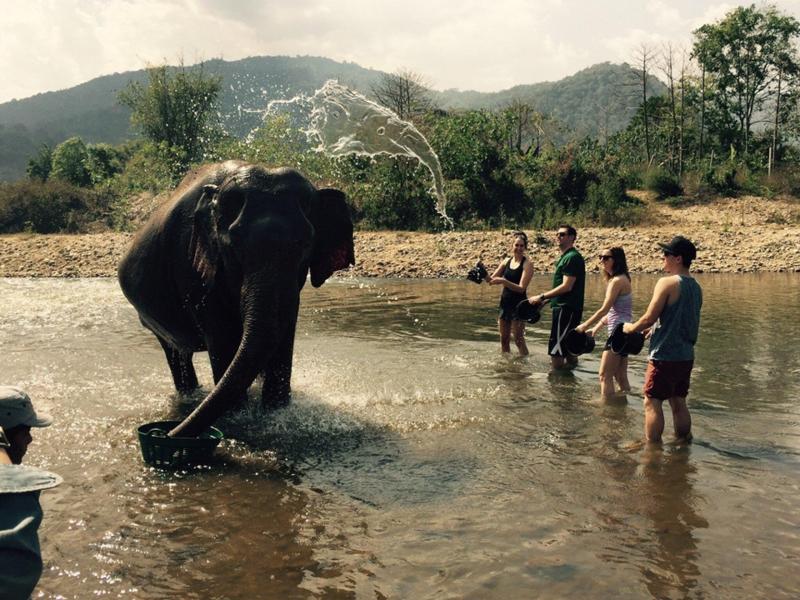 Всплеск воды, напоминающий портрет слона кадр, момент, ракурс, событие, фотография, фотомир, явление