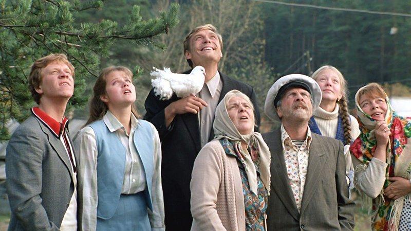 «Любовь и голуби», 1984 Российское кино, кино, культовые фильмы, советское кино, фильмы
