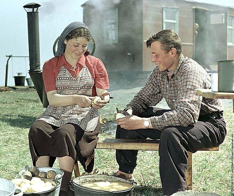 Целинники готовят обед у полевой кухни. Фотограф Исаак Тункель, 1955 год. СССР, история, фотографии в цвете
