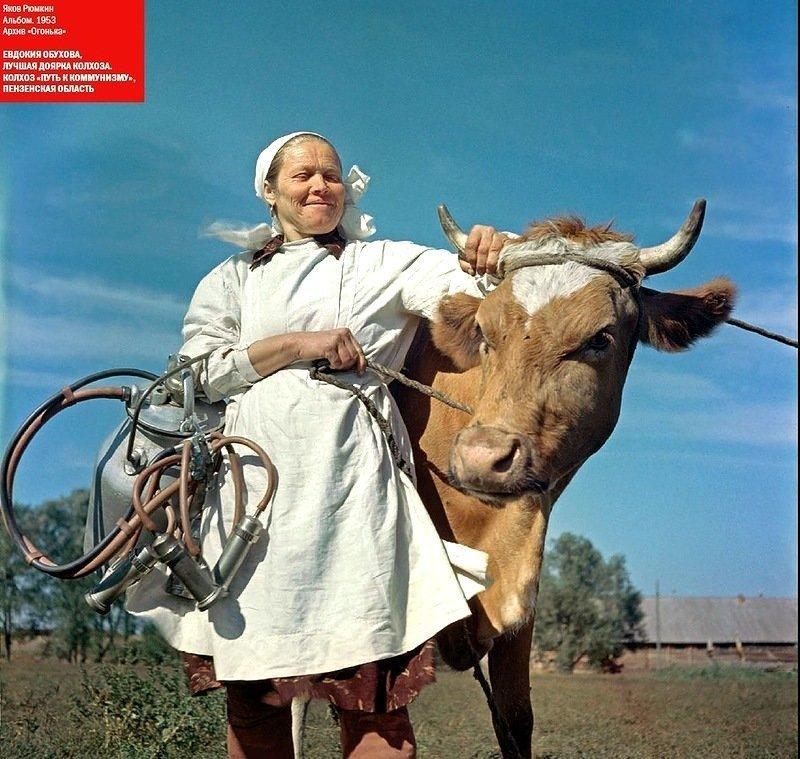Доярка колхоза. Путь к коммунизму. Пензенская область, 1953 СССР, история, фотографии в цвете