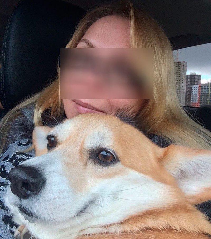 Фокса бросилась к убитой хозяйке и лаем привела полицейских  женщина, корги, преступление, россия, санкт-петербург, собака, убийство