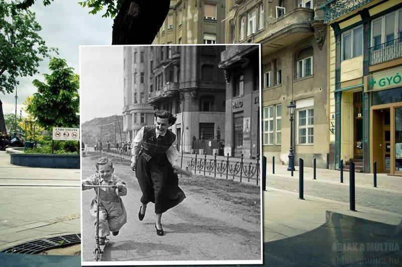 демпенгуем заменяем сравнение фотографий и век спустя поставляются наш склад