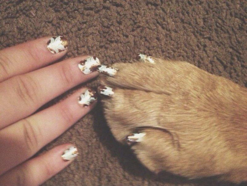 3. животные, кошачий маникюр, маникюр, одинаковый маникюр, собачий маникюр, флешмоб, фото