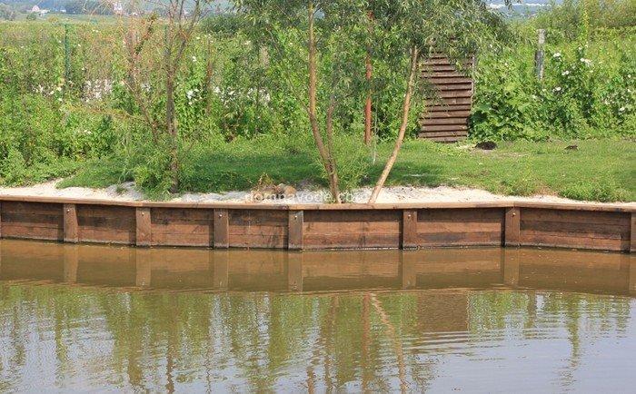 SOS! В московских прудах массово гибнут утята! Просьба поднять в топ! защита животных, природа, проблема, птицы, утята, экология
