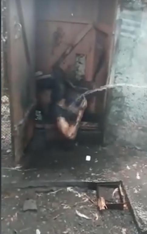 В Ростовской области курокрад решил спрятаться в туалете и провалился: видео ynews, Это фиаско, кража, ростов, смешно, туалет типа сортир