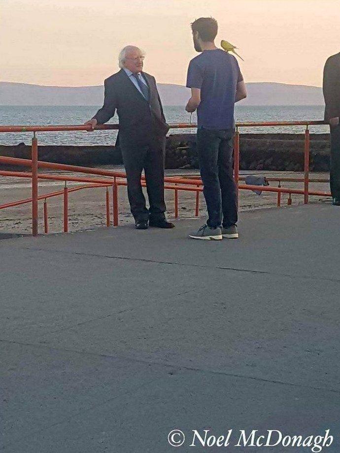 17. Мистер Хиггинс разговаривает с прохожим в мире, интересные люди, ирландия, народная любовь, политика, политики, президент, фото
