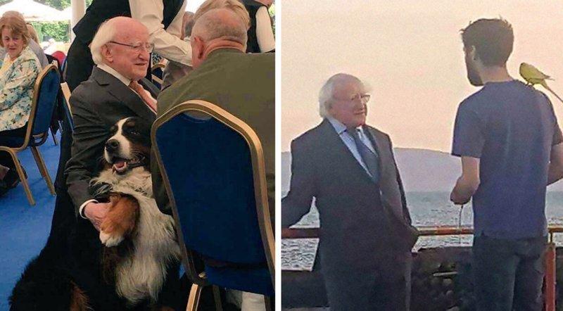 Ирландский президент - лучший в мире? 18 причин, почему так считают все ирландцы в мире, интересные люди, ирландия, народная любовь, политика, политики, президент, фото