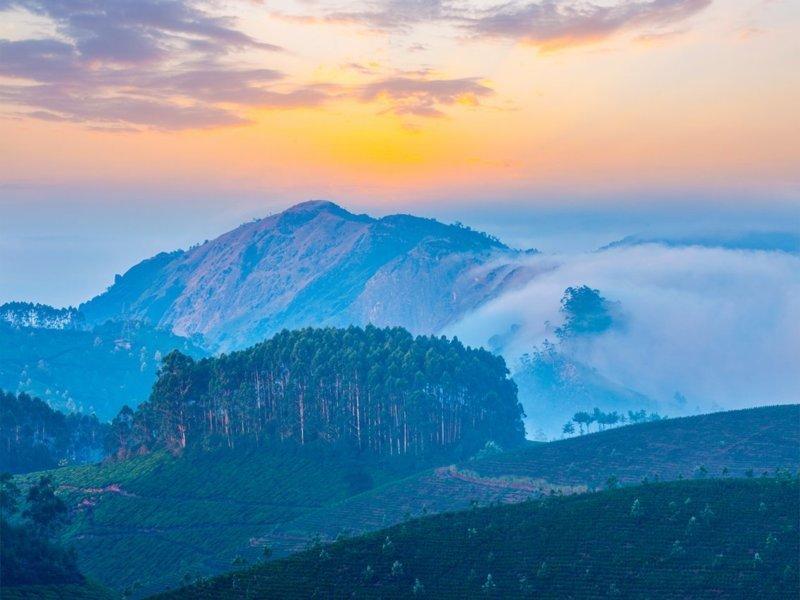 4. Западные Гхаты, Индия Lonely Planet, азия, куда поехать, план поездки, путешествия, рекомендации, советы бывалых, экспертное мнение