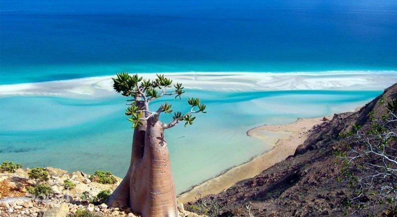 Остров Сокотра в Индийском океана, Йемен загадка, загадочные места, интересно, интересные места, мир, остров, природа