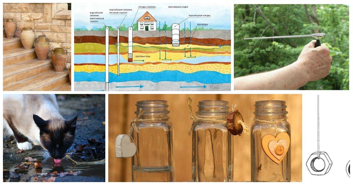 Как найти воду на участке биолокация