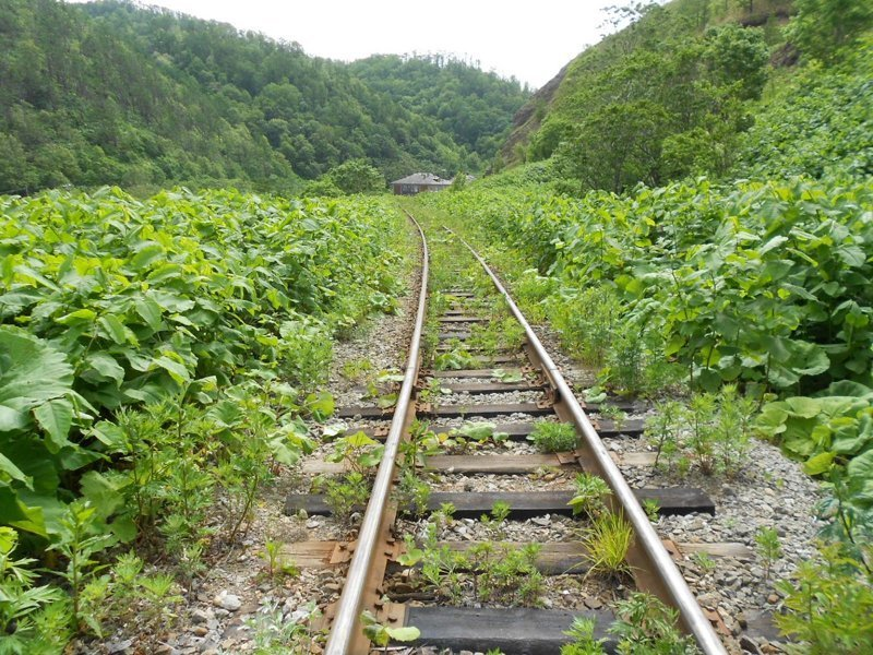 Заброшенная префектура Карафуто: следы пребывания японцев на Сахалине железная дорога, россия, сахалин, узкоколейка, узкоколейная железная дорога, эстетика, япония