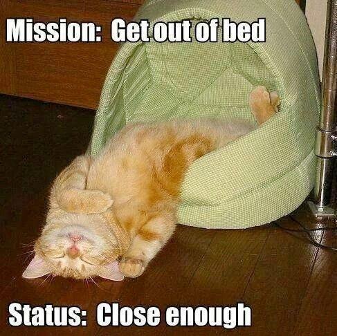 4. Кажется, миссия полностью провалена. будильник, кофе, муки, подъем, утро, юмор