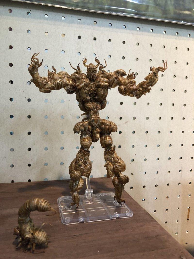 Школьник из Японии сделал уникальную статуэтку монстра из насекомых  в мире, люди, насекомые, своими руками, статуэтка, чудик