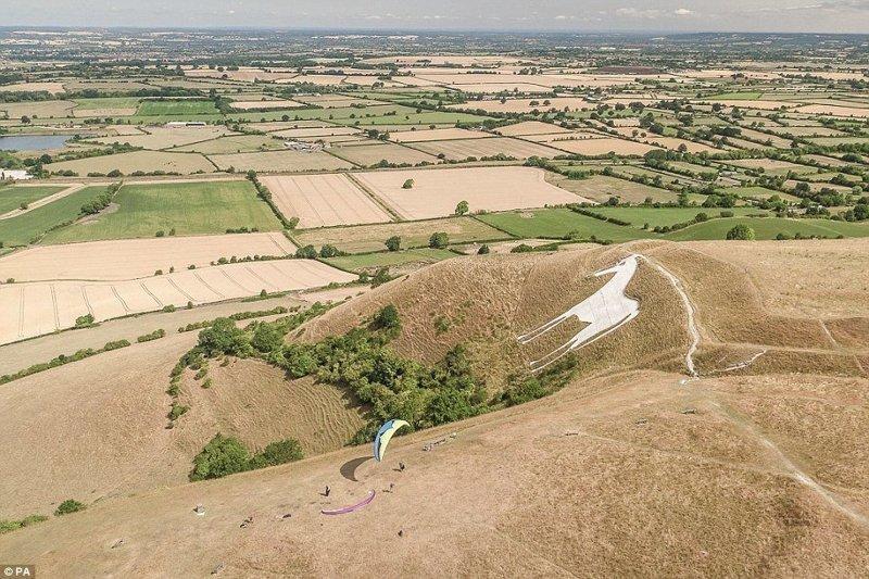Белая лошадь в Уэстбери (исторический памятник в Браттоне, графство Уилтшир) англия, аномальная жара, аэрофотосъемка, великобритания, засуха, лондон, раньше и сейчас, сравнение