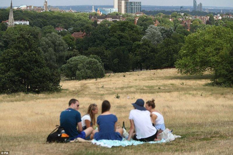 Пикник на сухой траве в лесопарке Хампстед-Хит на северо-западе Лондона англия, аномальная жара, аэрофотосъемка, великобритания, засуха, лондон, раньше и сейчас, сравнение