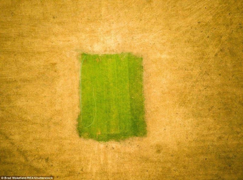 Это единственный зеленый оазис посреди засохшего поля англия, аномальная жара, аэрофотосъемка, великобритания, засуха, лондон, раньше и сейчас, сравнение