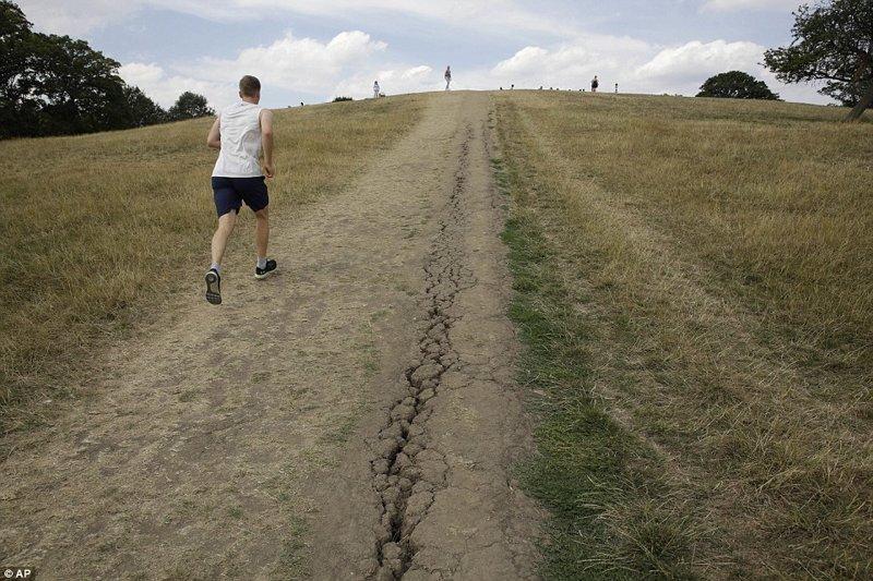 Холм Примроуз Хилл, Риджент-парк, Лондон англия, аномальная жара, аэрофотосъемка, великобритания, засуха, лондон, раньше и сейчас, сравнение