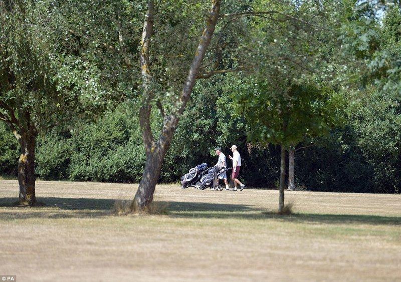 Игроки в гольф на площадке в Крондон-парке, Биллерикей, Эссекс англия, аномальная жара, аэрофотосъемка, великобритания, засуха, лондон, раньше и сейчас, сравнение