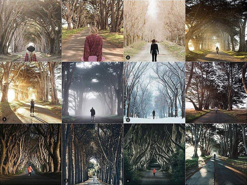 16. На дороге среди деревьев Instagram, коллаж, компиляция, однообразие, снимок, фотография, фотомир