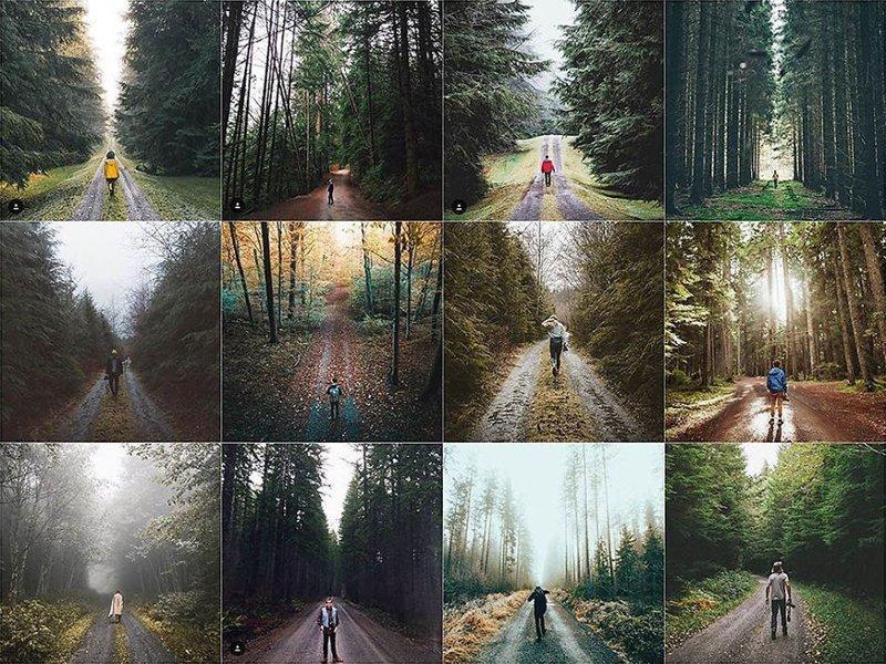26. В лесу Instagram, коллаж, компиляция, однообразие, снимок, фотография, фотомир