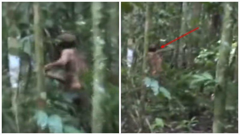 Робинзон XXI века: последний индеец уничтоженного племени снова попал на видео ynews, Последний житель, амазонское племя, видео, интересное, племена, ферма