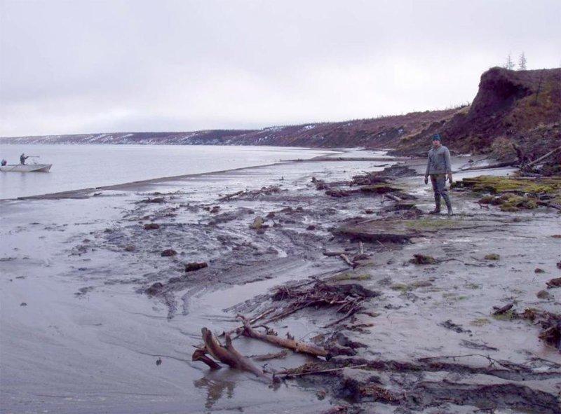 Один из червей, обнаруженный в вечной мерзлоте в 2015 году, был найден вблизи реки Алазея в Якутии и ему около 41 700 лет в мире, мамонт, наука, оживили, открытие, ученые