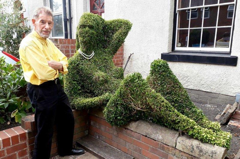 Пожилой садовник уличил прохожих в попытках заняться сексом с его кустом абсурд, дерево, забавно, неожиданно, садовник, странные вещи, фото