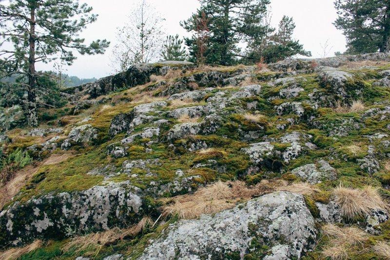 Чистая Ладога путешествия, факты, фото