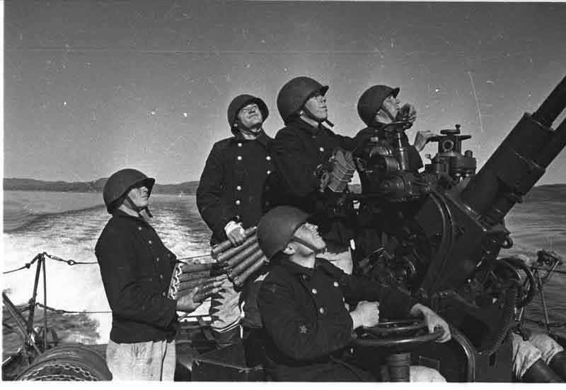 Братишки война, история, фото