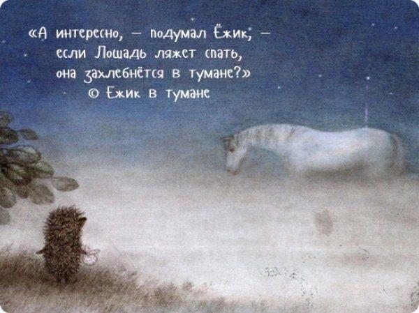Жизненные цитаты и крылатые фразы из всеми любимых советских мультфильмов история, мультфильмы, фразы