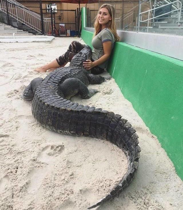 Девушка с крокодилом день, животные, кадр, люди, мир, снимок, фото, фотоподборка