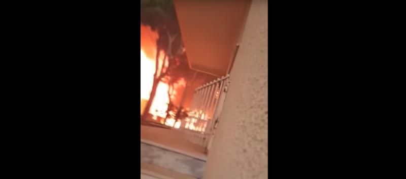 Грек успел снять пожар, охвативший его дом: видео ynews, видео, греция, пожар, стихия