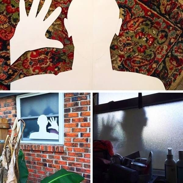 Идея на Хэллоуин день, животные, кадр, люди, мир, снимок, фото, фотоподборка