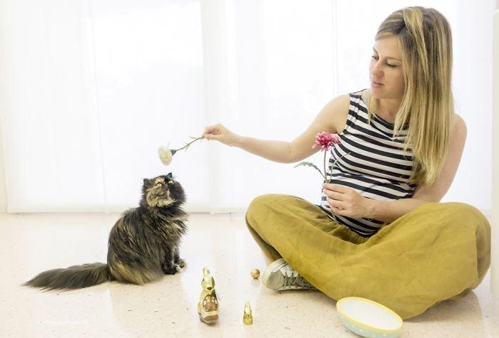 Пенни и Алиса ждут Ахилла беременность, беременные и кошачьи, домашние животные, женщины и кошки, кошки, предубеждения, фото, фотопроект