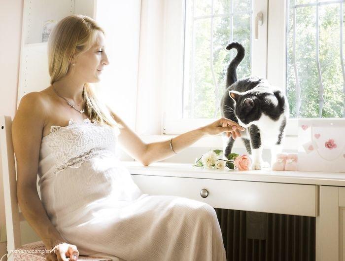 Рики и Анита ждут Аманду беременность, беременные и кошачьи, домашние животные, женщины и кошки, кошки, предубеждения, фото, фотопроект