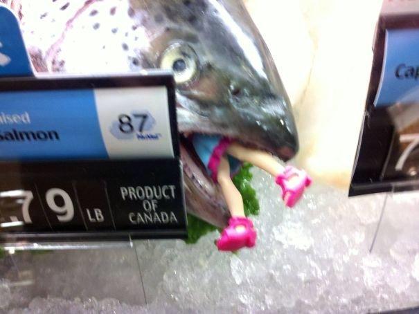 """15. """"Я увидел это в рыбном отделе нашего супермаркета"""" вот это да!, всюду жизнь, забавные фотки, магазин, не верь глазам, странные фото, супермаркет, фото из соцсетей"""