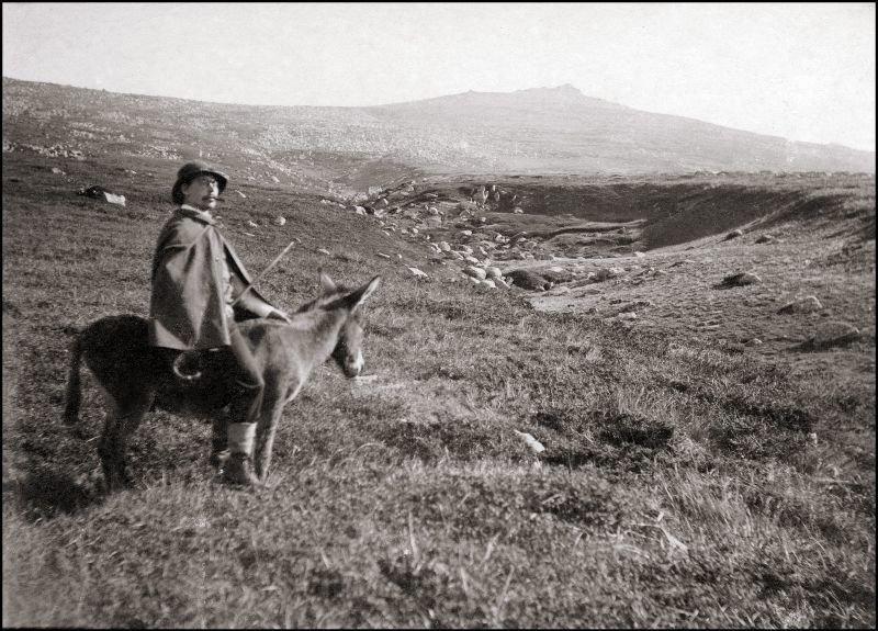Поездка на осле ХХ век, балканы, болгария, история, начало века, фотография