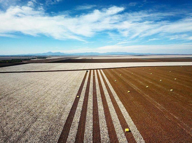 Уборка урожая дроны, фото с высоты, фотографии с дронов, фотография