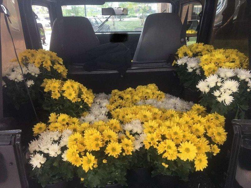 12. «После выпускного эти цветы могли быть просто выброшены, но я отнёс их в свою машину, чтобы отвезти в местный дом престарелых» в мире, добро, истории, люди, позитив, фото