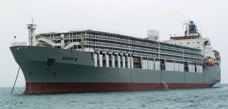 Скотовозы (Livestock carrier) коммерческий флот, море, суда, торговый флот