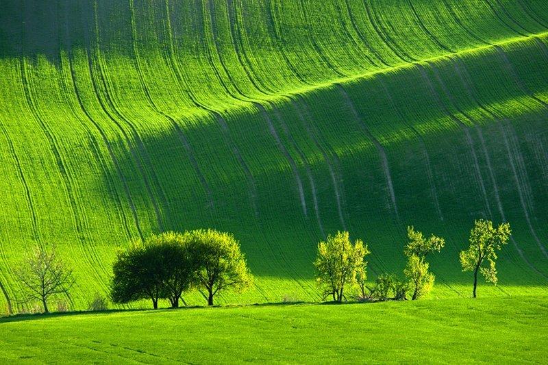 20. Зеленые луга Моравии, Чехия  интересно, планета земля, природа, удивительное рядом, факты о земле, факты о нашей планете