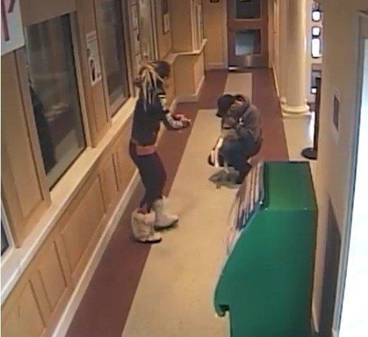 Драматическое спасение щенка, снятое камерой в полицейском участке в мире, животные, люди, собака, спасение, щенок