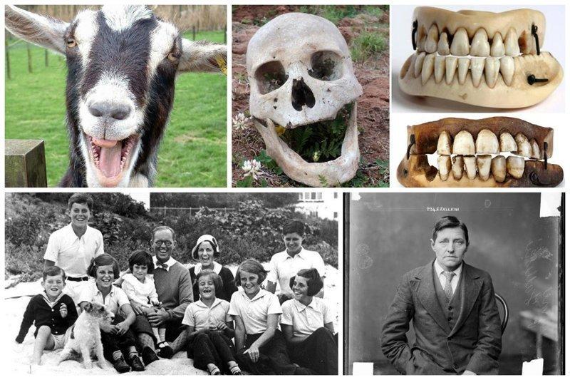 15 самых ужасных  странностей нашего мира интересное, люди, мистика, необычное, поступки, странности, факты, явления