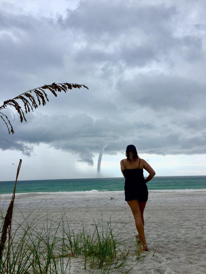Торнадо день, животные, кадр, люди, мир, снимок, фото, фотоподборка