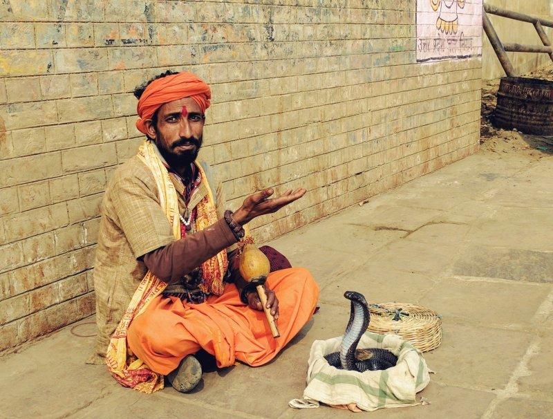 Заклинатель змей день, животные, кадр, люди, мир, снимок, фото, фотоподборка