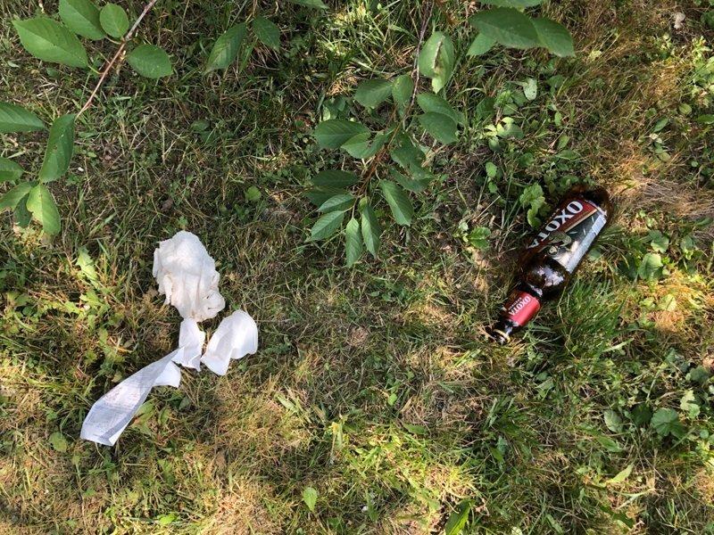 Свинство - как стандарт поведения людей алкоголизм, быдло, жить в россии, мусор, накипело, свинство