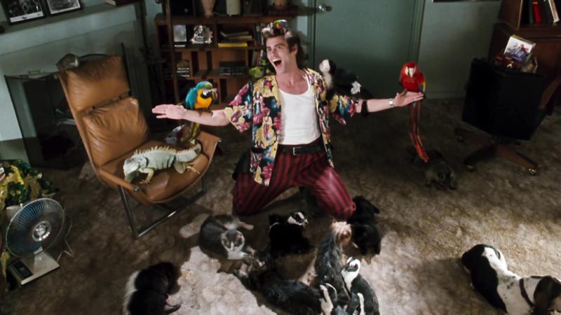 Эйс Вентура: Розыск домашних животных американские, кино, комедии, фильм